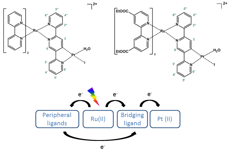 Figure 1: Structure of [Ru(bpy)2(2,5tpy)PtI(H2O)]2+ (left, RuPt) and [Ru(dceb)2(2,5tpy)PtI(H2O)]2+ (right, EtRuPt).The panel below shows a generally accepted picture of intramolecular electron transfer processes induced by photoexcitation, with the bridging ligand acting as electron reservoir.